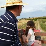 Paseo en zorra de tractor