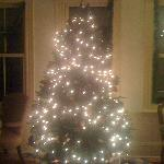 The Christmas Tree in the front sitting room of the Inn