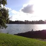 View from our caravan of the Moruya River