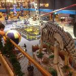 dinosaur, rocket, hot air balloon, Segway track, and more...