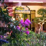 Entrance and Christmas decor