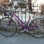 Che bello avere anche la bicicletta dell'Hotel!Firenze  a Natale ' e'meravigliosa!