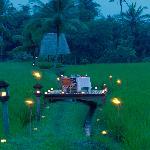 Romantic dinner on rice field
