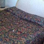 Bed....disgusting