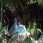 Lilly fountain on the lush deck of Atlantis House