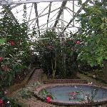 Greenhouse Exhibit