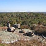 Harriman State Park Foto