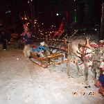 Kids heading on reindeer sleigh ride