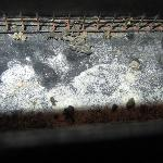 AC/Heater, with mold & animal droppings