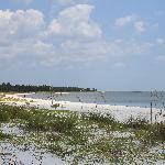 Beaches at Carrabelle