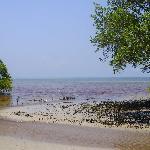 foto da quinta praia (mangue)