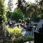 CasaVino Garden