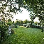 The lower garden at Kamahi