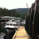 low tide at telegraph cove…stopped in for the