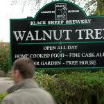 Walnut Tree, Heworth Village.