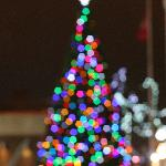 Christmea Tree  Owen Sound