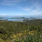 Capture the view and jump with joy at the top of the Coromandel Hills