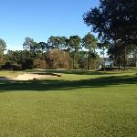 beautiful shot overlooking #3 green, the picturesque #2 tee box and Bayou Marcus