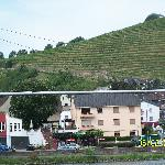 Anker Grill across street seen from Mosel - Vineyards beyond