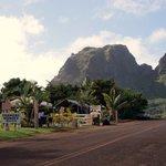 Anahola Hawaiian Land Farmer's Market-bild