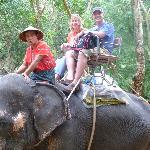 Siam Safari Elephant trekking