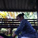 Massage on the verandah