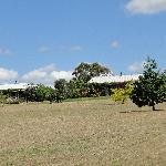 Lodge grounds