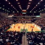Utah Valley University Basketball