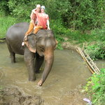 Foto de Jumbo Elephant Camp Day Tour