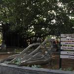 Sculpture Garden at the entrance
