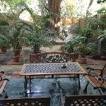 Saubhag's patio