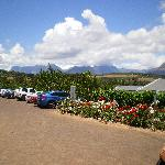 Outside JC le Roux Winery