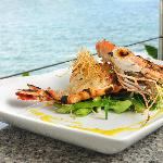 Glorious Tiger Prawns