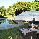 Clean pool!!!