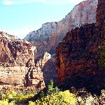Scene From Zion National Park