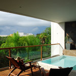 The Deck an d plunge pool