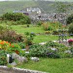 Susan's beautiful garden