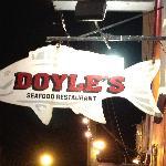 Doyle's