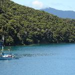 Portage Bay on Queen Charlotte Track