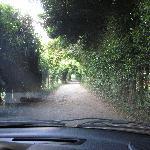 Aspecto del acceso desde la carretera