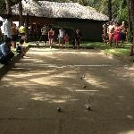 fridays petanque tournament