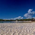 particolare dela vicina spiaggia Watamu Bay