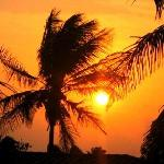 coucher de soleil vu de ma chambre