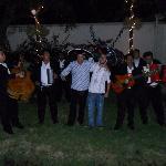 noche mariachi