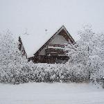 November snowstorm