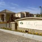 Olive Grove Suites
