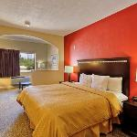 TXComfort Suites King Room Exposio