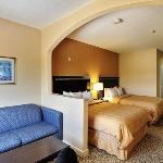 TXComfort Suites Queen Room Exposio