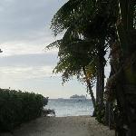 View down beach access walkway.