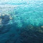 snorkeling further along beach